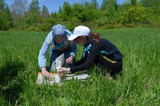 Эколого-биологический лагеря «Кедровка» (отчет)